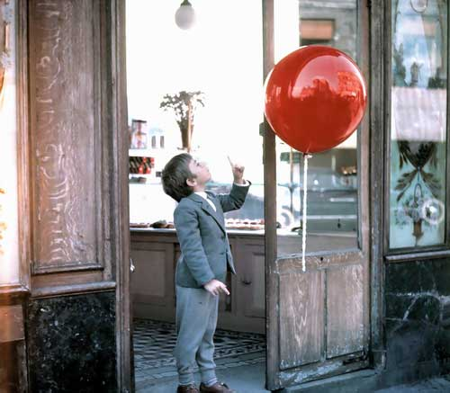 the black balloon film essay